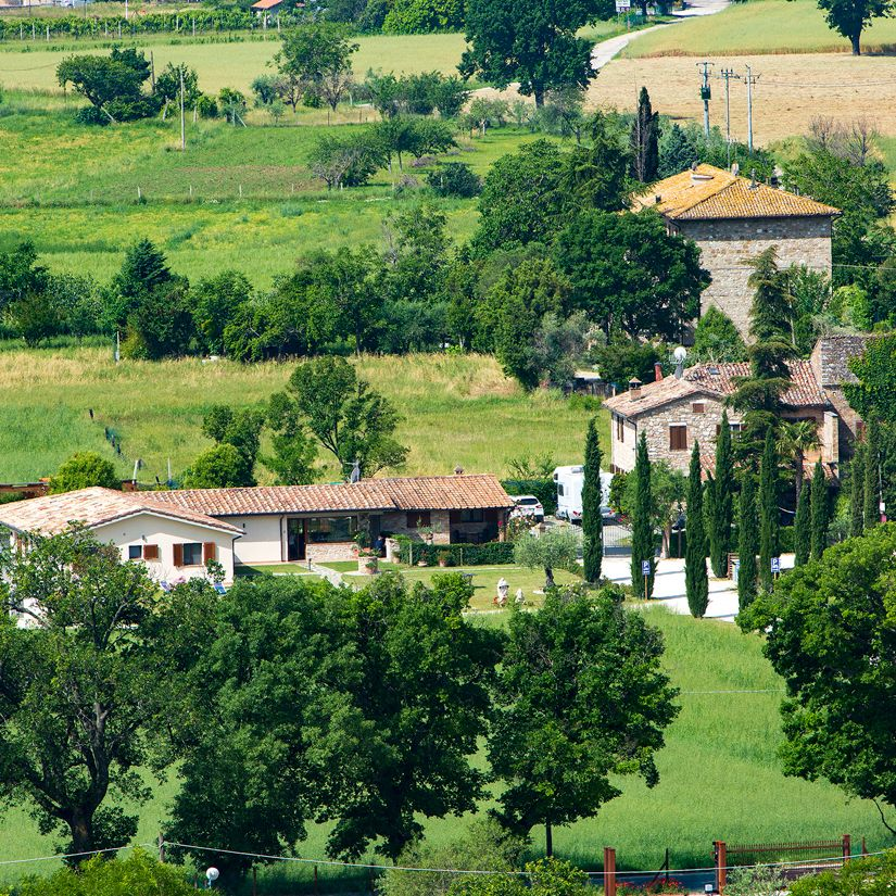 Vacanze ad Assisi. Il viale di cipressi del bed & breakfast All'Antica Mattonata
