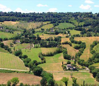 Assisi, colline umbre paesaggio